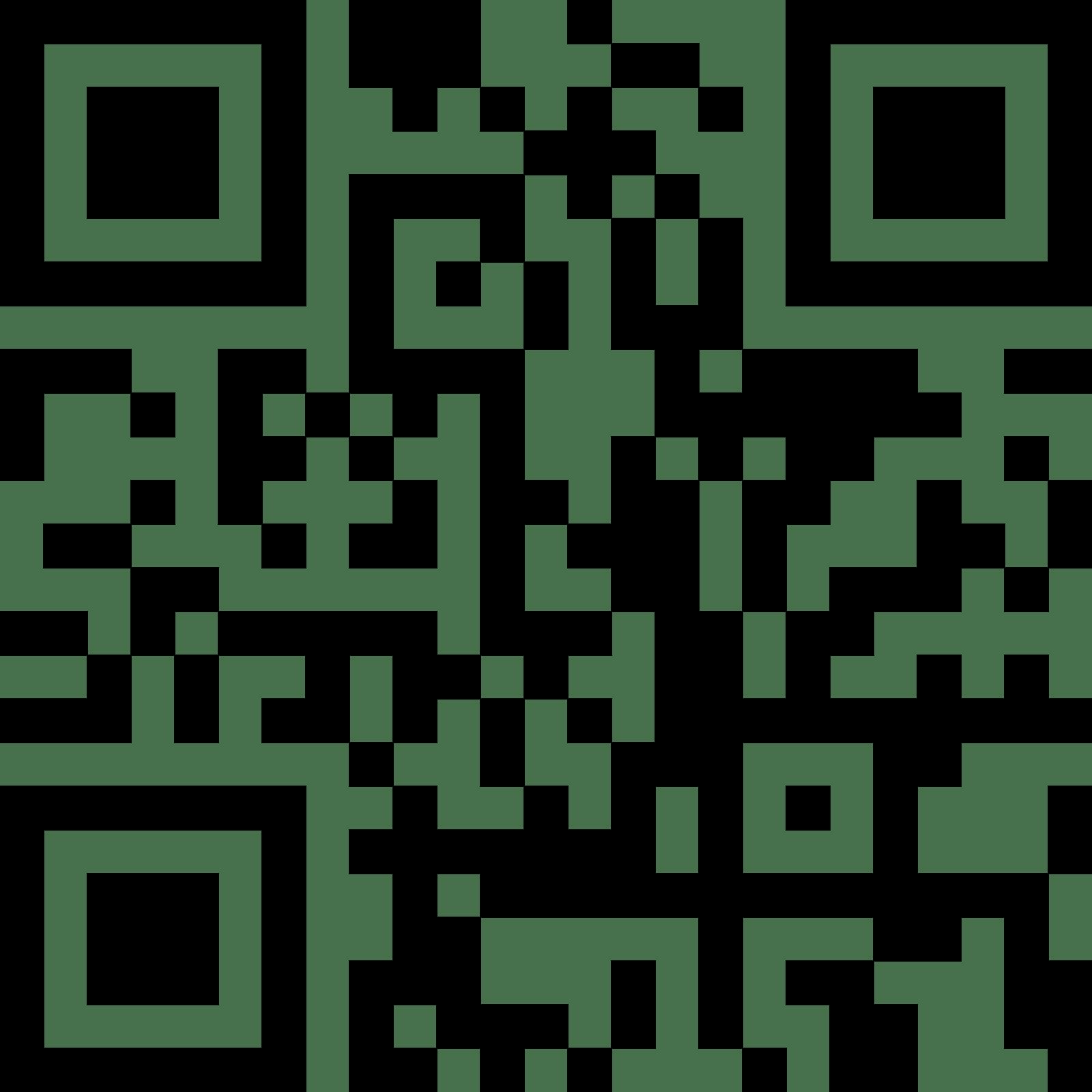 QR-код салона Камелия